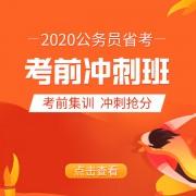 app广告图_冲刺班弹窗1